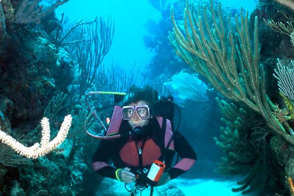 roatan-diving-packages